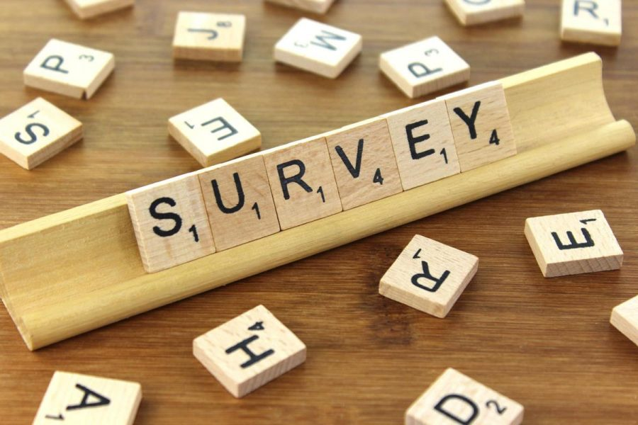 2019 Library Survey Results